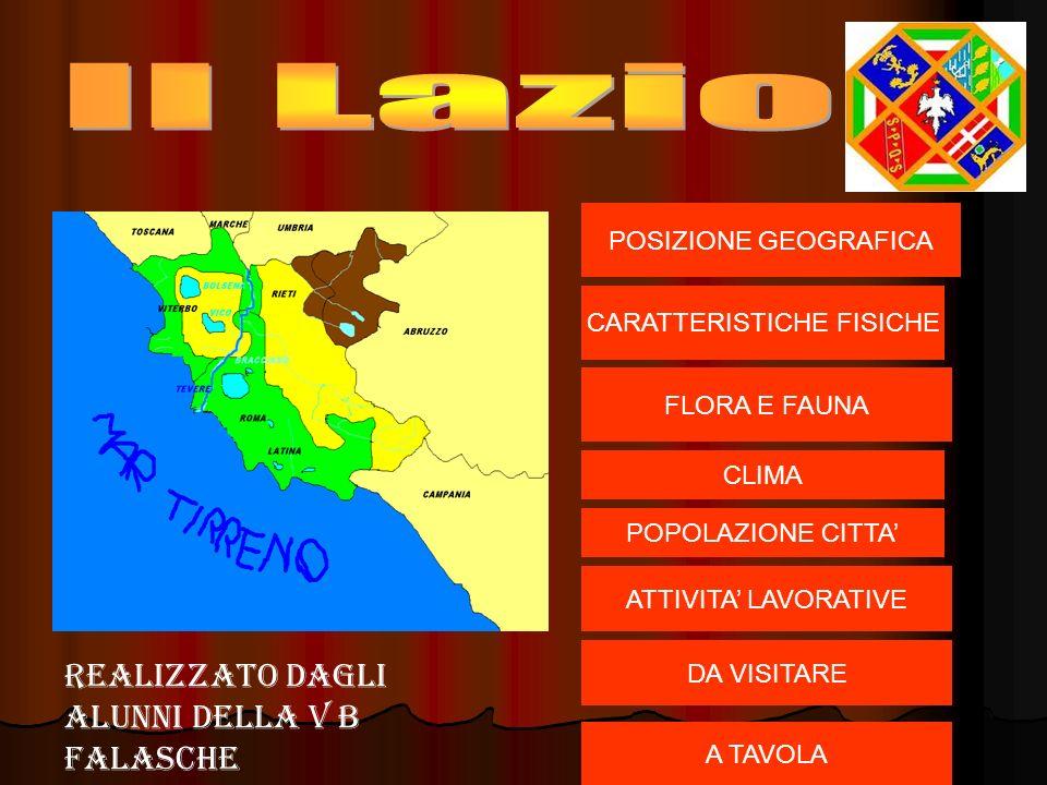 Italia centrale Italia centrale confini:Nord Toscana,Umbria,Marche.