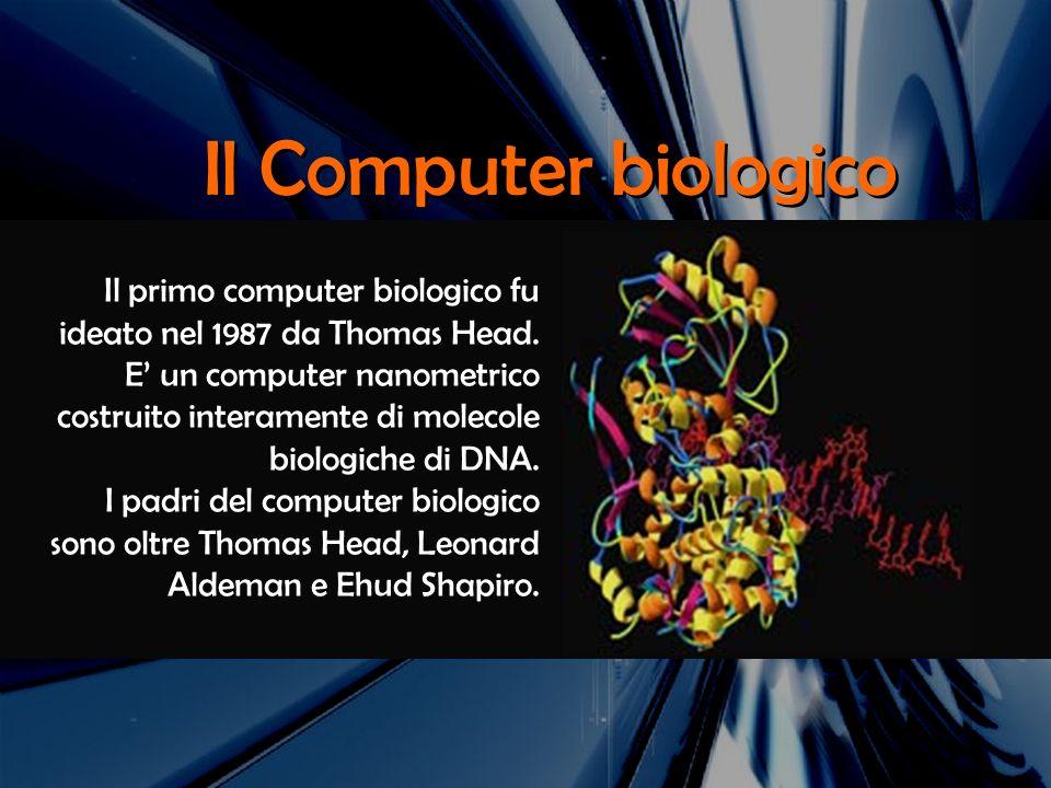Il Computer biologico Il primo computer biologico fu ideato nel 1987 da Thomas Head. E un computer nanometrico costruito interamente di molecole biolo