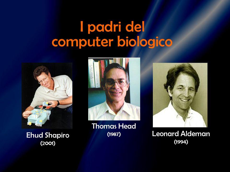 Ehud Shapiro (2001) Leonard Aldeman (1994) Thomas Head (1987) I padri del computer biologico