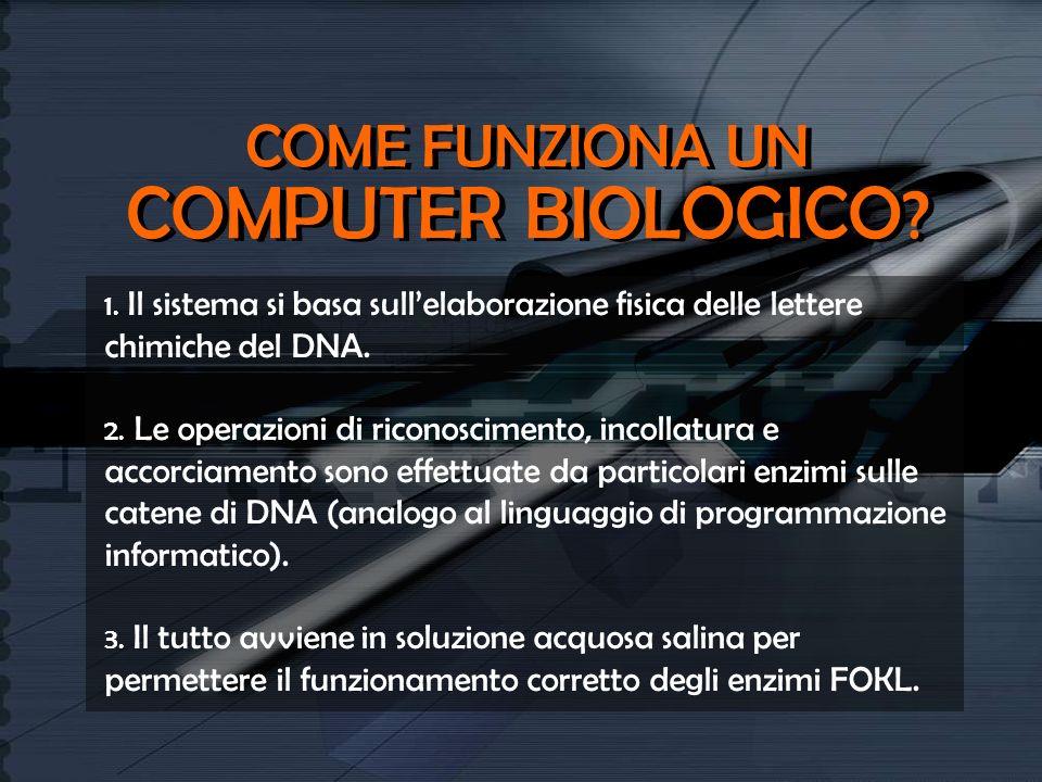 COME FUNZIONA UN COMPUTER BIOLOGICO ? 1. Il sistema si basa sullelaborazione fisica delle lettere chimiche del DNA. 2. Le operazioni di riconoscimento