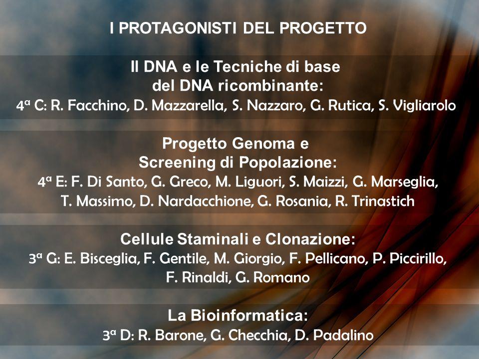I PROTAGONISTI DEL PROGETTO Il DNA e le Tecniche di base del DNA ricombinante: 4 a C: R. Facchino, D. Mazzarella, S. Nazzaro, G. Rutica, S. Vigliarolo