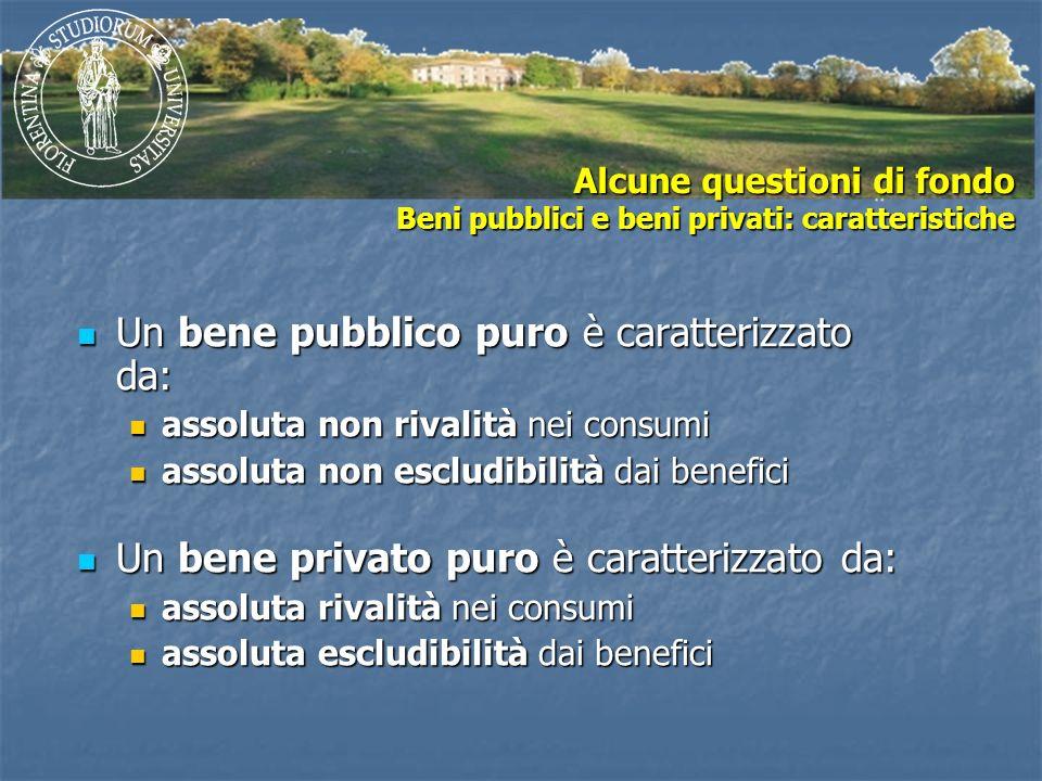 Alcune questioni di fondo Beni pubblici e beni privati: caratteristiche Un bene pubblico puro è caratterizzato da: Un bene pubblico puro è caratterizz