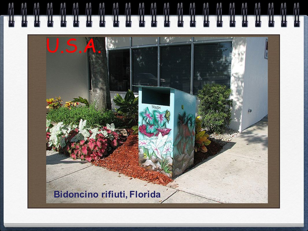 U.S.A. Bidoncino rifiuti, Florida