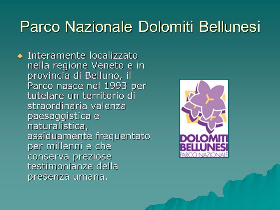 Parco Nazionale Dolomiti Bellunesi Interamente localizzato nella regione Veneto e in provincia di Belluno, il Parco nasce nel 1993 per tutelare un ter