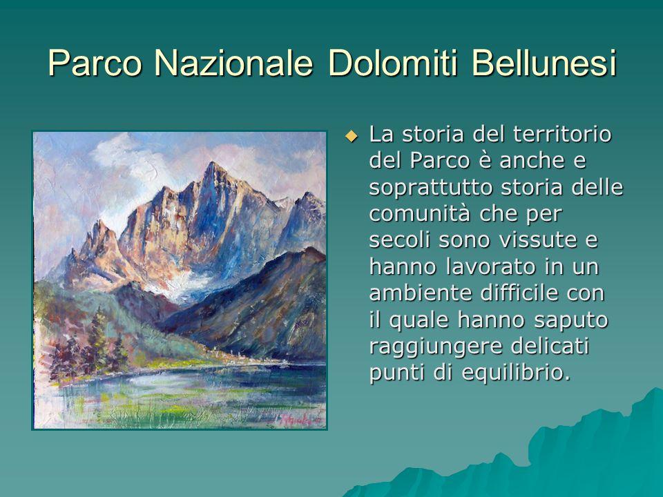 Parco Nazionale Dolomiti Bellunesi La storia del territorio del Parco è anche e soprattutto storia delle comunità che per secoli sono vissute e hanno