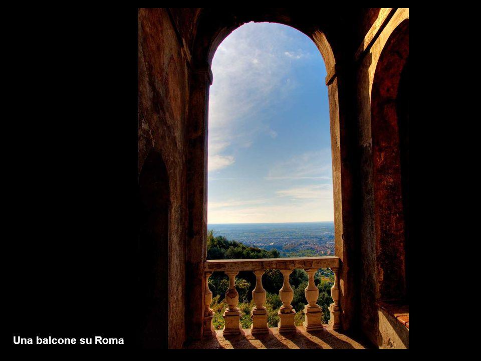 Monferrato - Vignale al tramonto