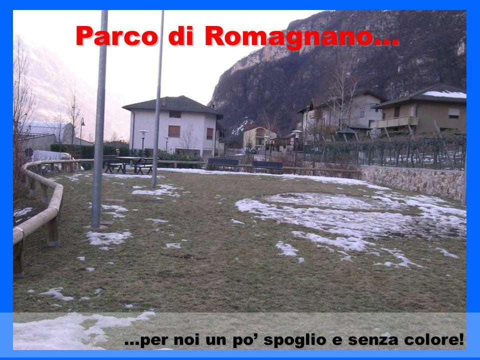 …per noi un po spoglio e senza colore! Parco di Romagnano…
