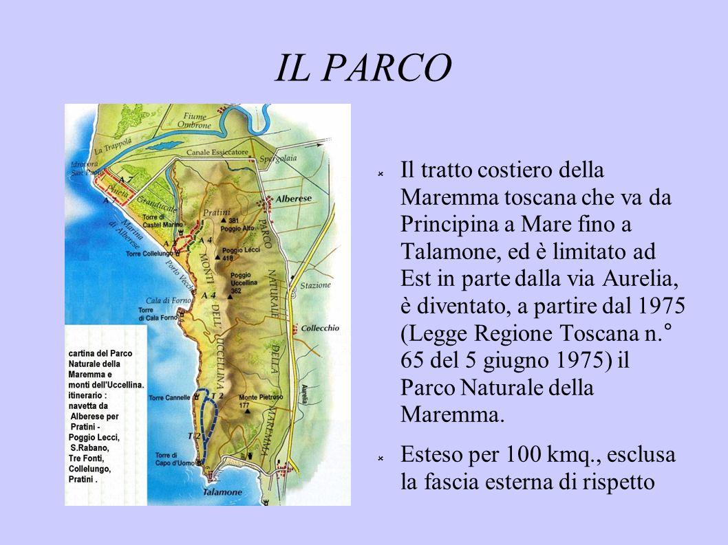 IL PARCO Il tratto costiero della Maremma toscana che va da Principina a Mare fino a Talamone, ed è limitato ad Est in parte dalla via Aurelia, è dive