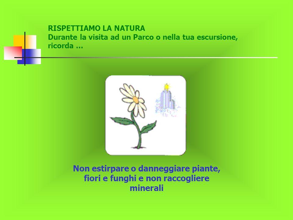 RISPETTIAMO LA NATURA Durante la visita ad un Parco o nella tua escursione, ricorda... Non estirpare o danneggiare piante, fiori e funghi e non raccog
