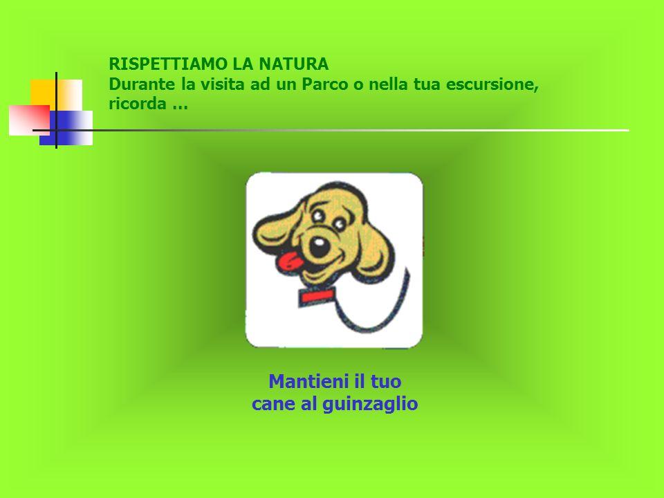 RISPETTIAMO LA NATURA Durante la visita ad un Parco o nella tua escursione, ricorda... Mantieni il tuo cane al guinzaglio