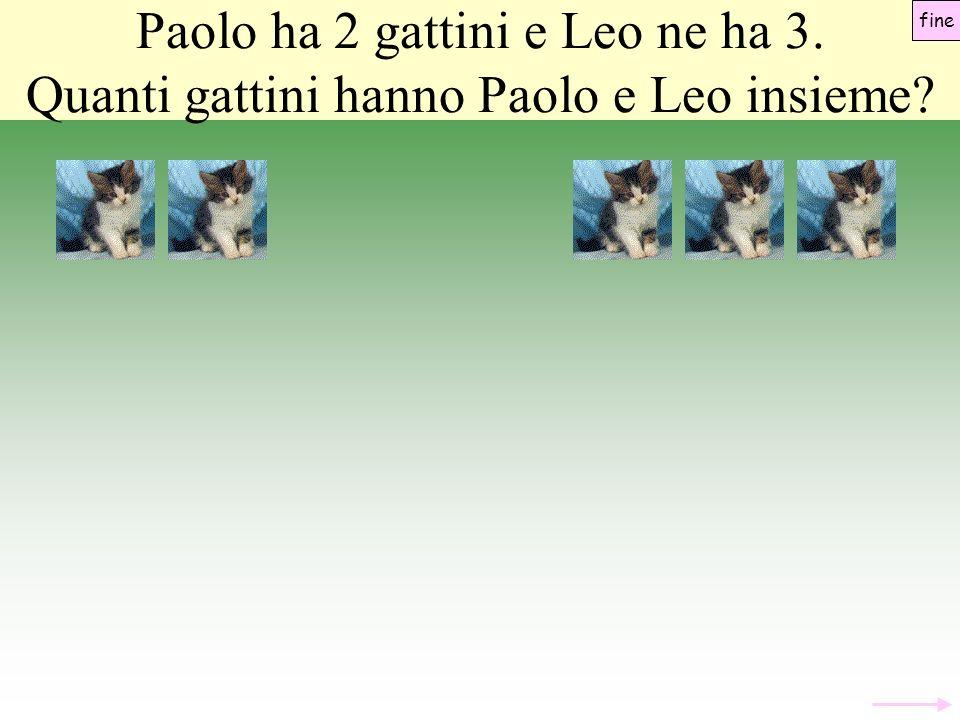 Paolo ha 2 gattini e Leo ne ha 3. Quanti gattini hanno Paolo e Leo insieme? fine