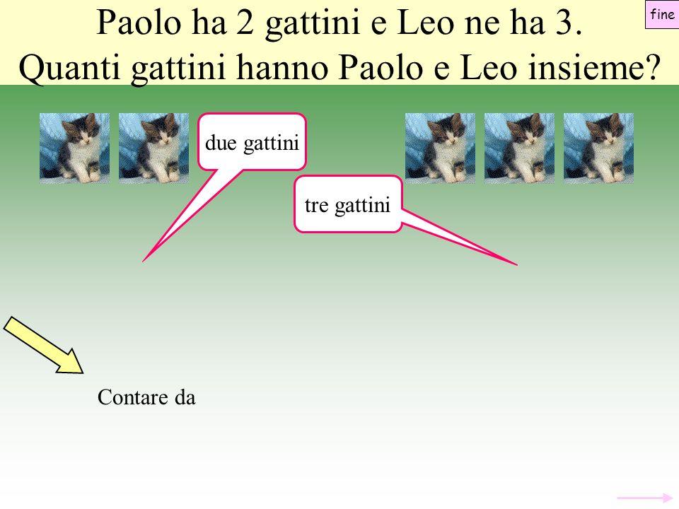 Paolo ha 2 gattini e Leo ne ha 3.Quanti gattini hanno Paolo e Leo insieme.