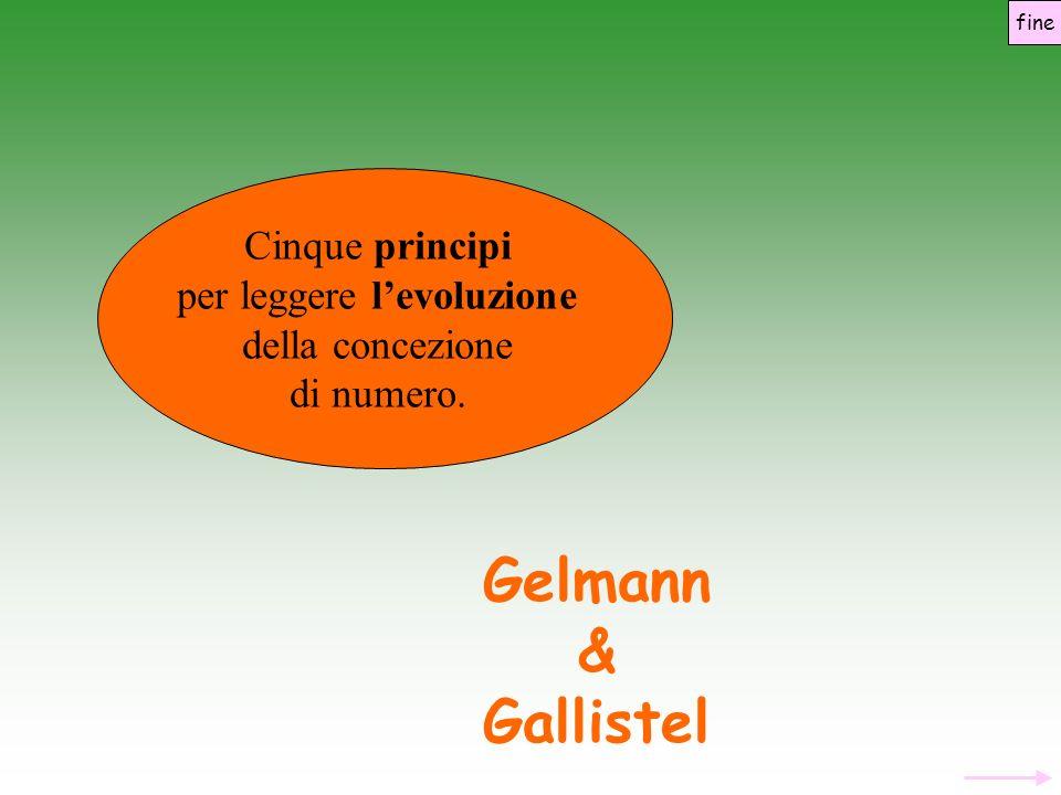 Gelmann & Gallistel Cinque principi per leggere levoluzione della concezione di numero. fine