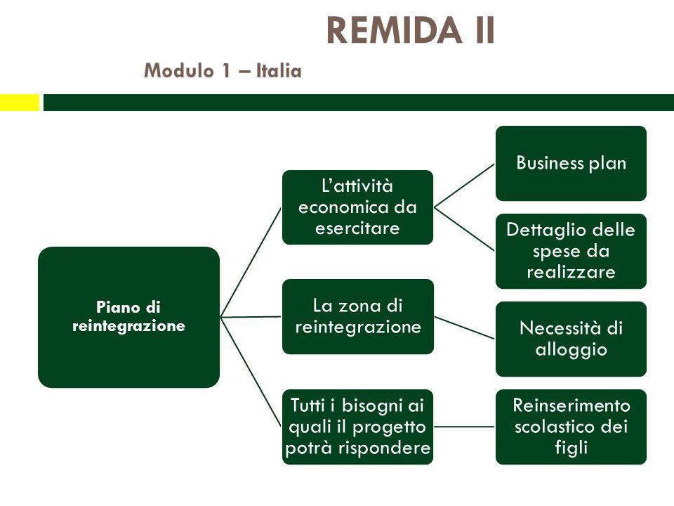REMIDA II Modulo 1 – Italia Piano di reintegrazione Lattività economica da esercitare Business plan Dettaglio delle spese da realizzare La zona di reintegrazione Necessità di alloggio Tutti i bisogni ai quali il progetto potrà rispondere Reinserimento scolastico dei figli