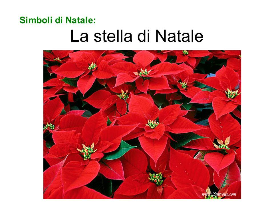 La stella di Natale Simboli di Natale: