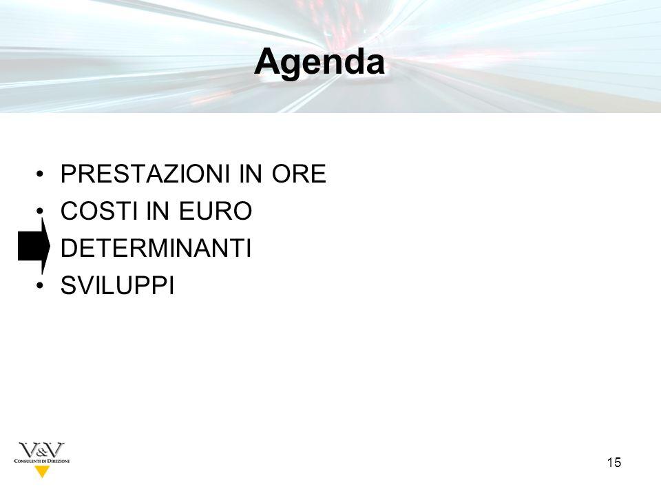 15 PRESTAZIONI IN ORE COSTI IN EURO DETERMINANTI SVILUPPI Tavole Agenda