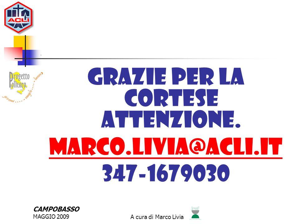 CAMPOBASSO MAGGIO 2009A cura di Marco Livia APPLICAZIONI DELLA RSI NEL PROGETTO POLICORO SVILUPPA CAPACITA DI ANALISI DELLOPERATO AZIENDALE PROMUOVE LAPPLICAZIONE DEL COMPENDIO DELLA CHIESA CATTOLICA SVILUPPA DINAMICHE VIRTUOSE SUI TERRITORI