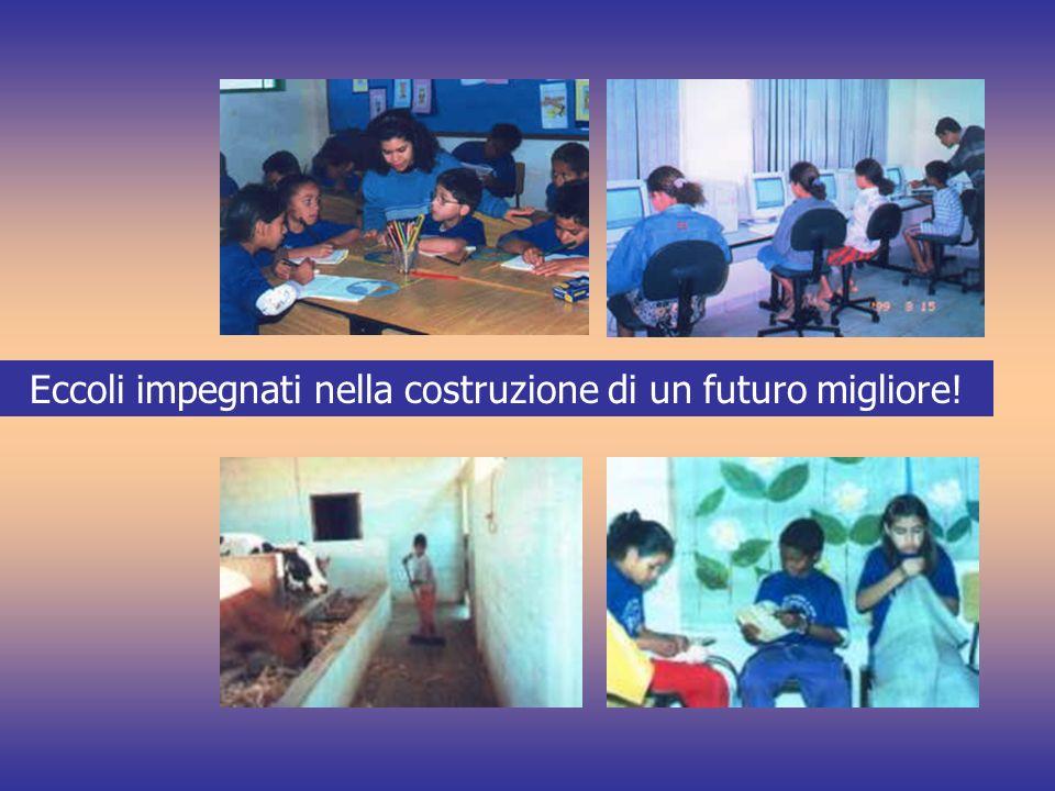 Eccoli impegnati nella costruzione di un futuro migliore!