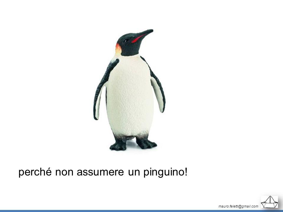 mauro.feletti@gmail.com perché non assumere un pinguino!