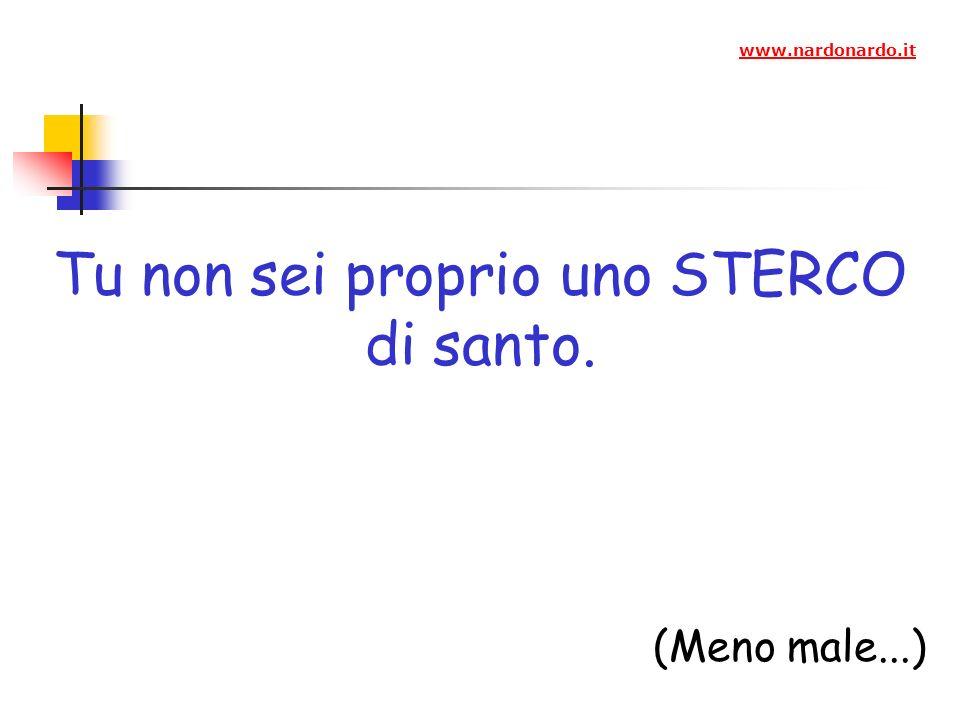 Tu non sei proprio uno STERCO di santo. (Meno male...) www.nardonardo.it