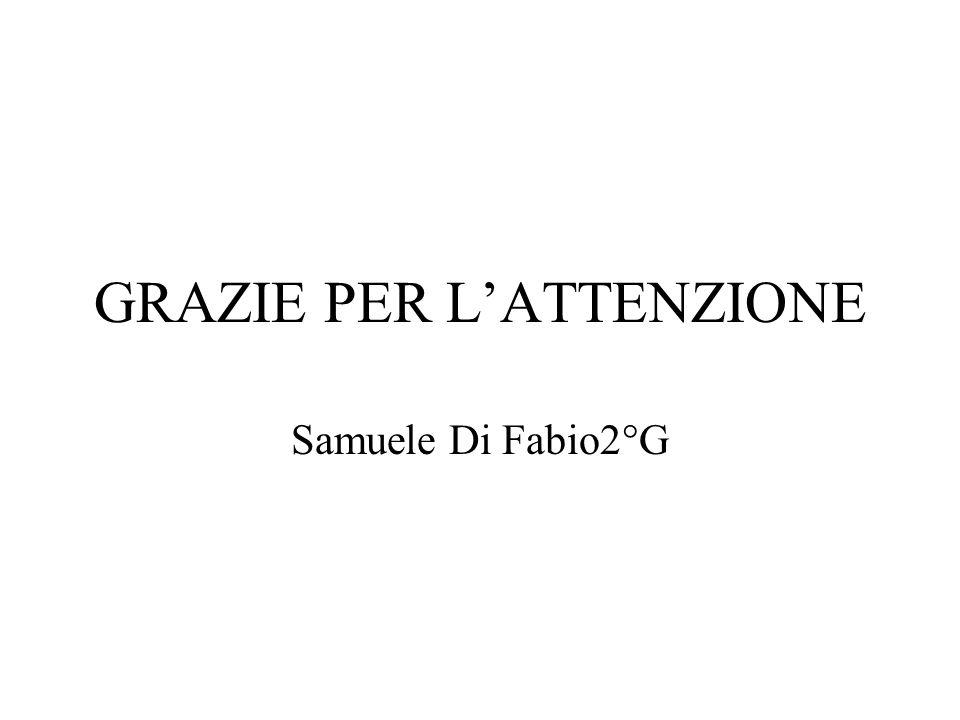 GRAZIE PER LATTENZIONE Samuele Di Fabio2°G