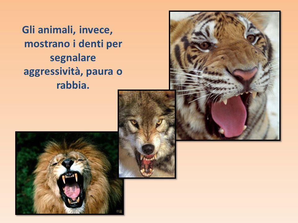 Gli animali, invece, mostrano i denti per segnalare aggressività, paura o rabbia.
