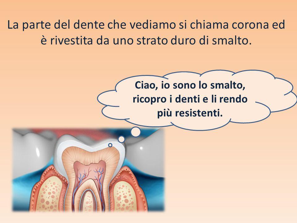 La parte del dente che vediamo si chiama corona ed è rivestita da uno strato duro di smalto. Ciao, io sono lo smalto, ricopro i denti e li rendo più r