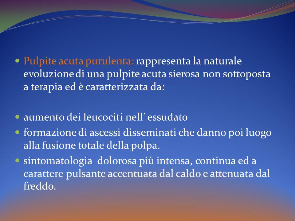 Pulpite acuta purulenta: rappresenta la naturale evoluzione di una pulpite acuta sierosa non sottoposta a terapia ed è caratterizzata da: aumento dei