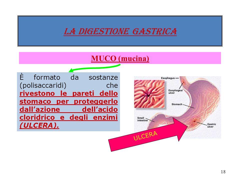 17 LA DIGESTIONE gastrica SUCCO GASTRICO COMPOSTO DA HCl (acido cloridrico) Rende lambiente dello stomaco molto acido (1-2 di pH) per attivare lazione