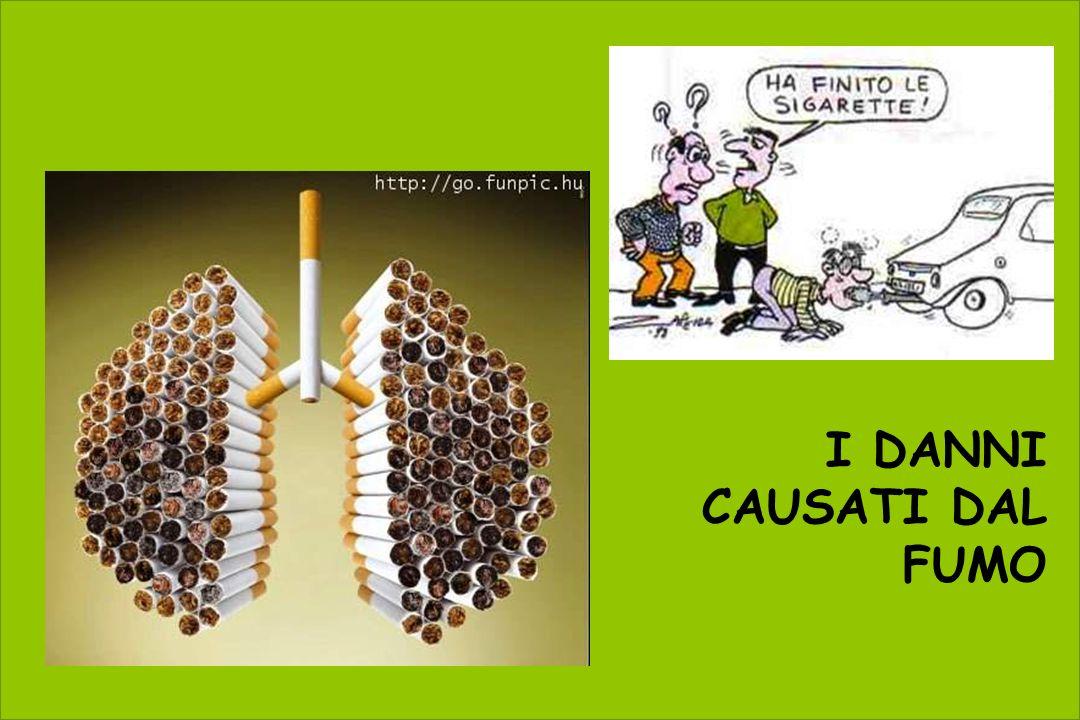 I DANNI CAUSATI DAL FUMO