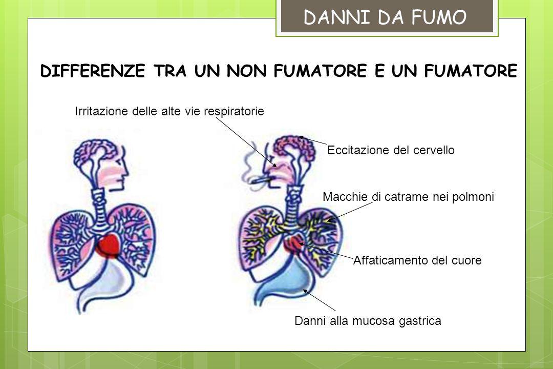 DIFFERENZE TRA UN NON FUMATORE E UN FUMATORE Macchie di catrame nei polmoni Eccitazione del cervello Affaticamento del cuore Irritazione delle alte vi
