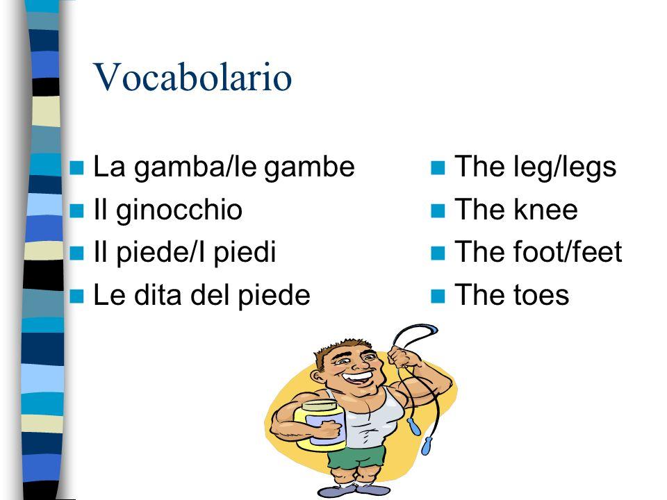 Vocabolario La gamba/le gambe Il ginocchio Il piede/I piedi Le dita del piede The leg/legs The knee The foot/feet The toes