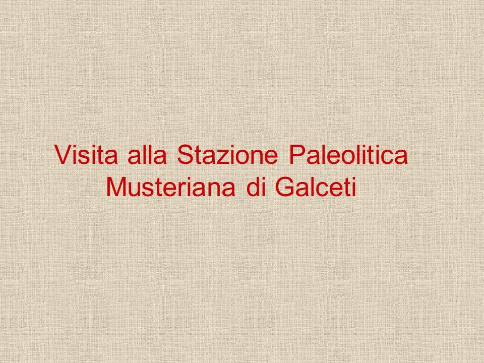 Visita alla Stazione Paleolitica Musteriana di Galceti