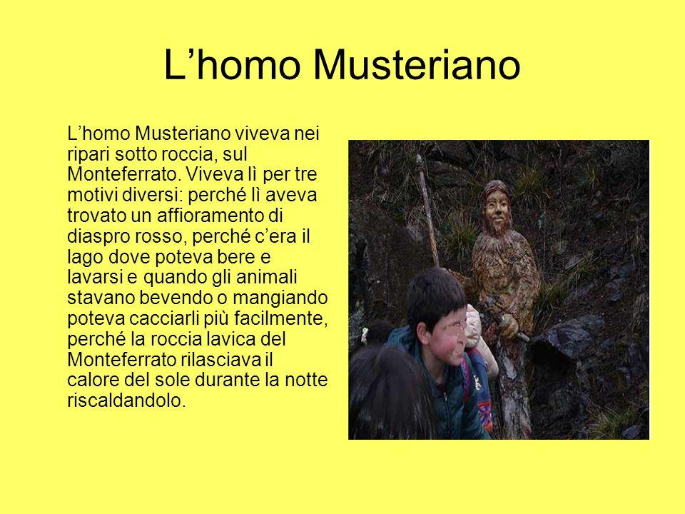 Lhomo Musteriano Lhomo Musteriano viveva nei ripari sotto roccia, sul Monteferrato. Viveva lì per tre motivi diversi: perché lì aveva trovato un affio