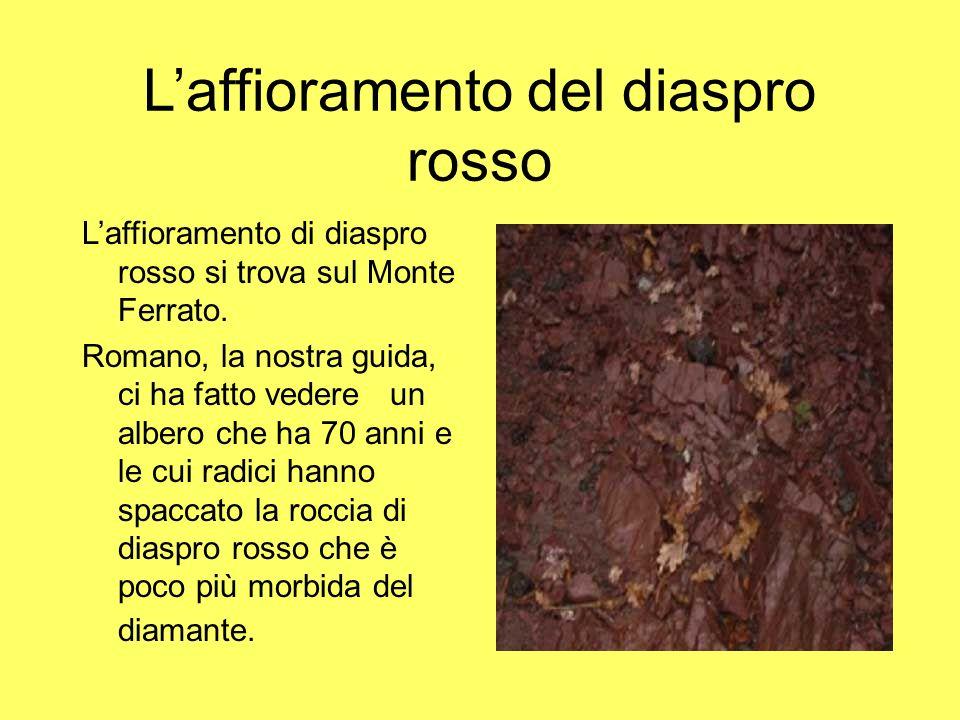 Laffioramento del diaspro rosso Laffioramento di diaspro rosso si trova sul Monte Ferrato. Romano, la nostra guida, ci ha fatto vedere un albero che h