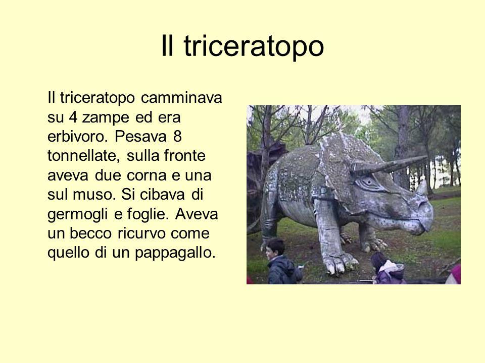 Il triceratopo Il triceratopo camminava su 4 zampe ed era erbivoro. Pesava 8 tonnellate, sulla fronte aveva due corna e una sul muso. Si cibava di ger