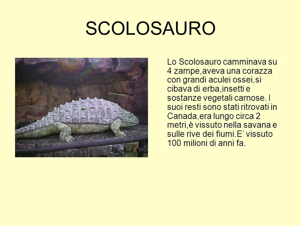 SCOLOSAURO Lo Scolosauro camminava su 4 zampe,aveva una corazza con grandi aculei ossei,si cibava di erba,insetti e sostanze vegetali carnose. I suoi