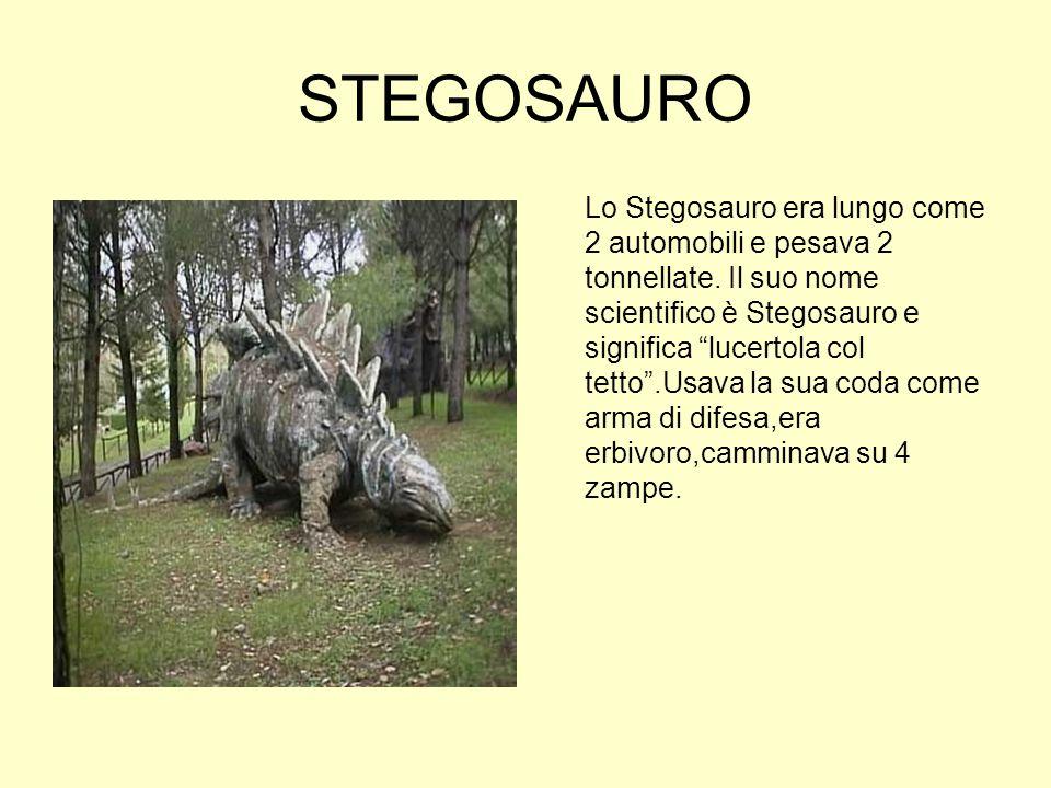 STEGOSAURO Lo Stegosauro era lungo come 2 automobili e pesava 2 tonnellate. Il suo nome scientifico è Stegosauro e significa lucertola col tetto.Usava