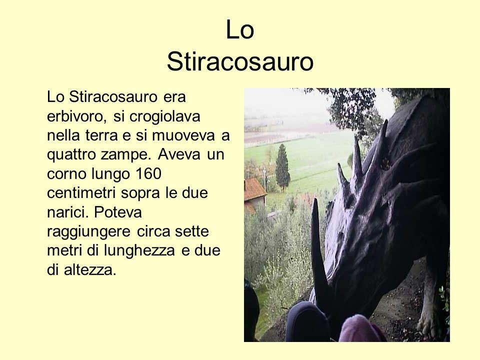 Lo Stiracosauro Lo Stiracosauro era erbivoro, si crogiolava nella terra e si muoveva a quattro zampe. Aveva un corno lungo 160 centimetri sopra le due