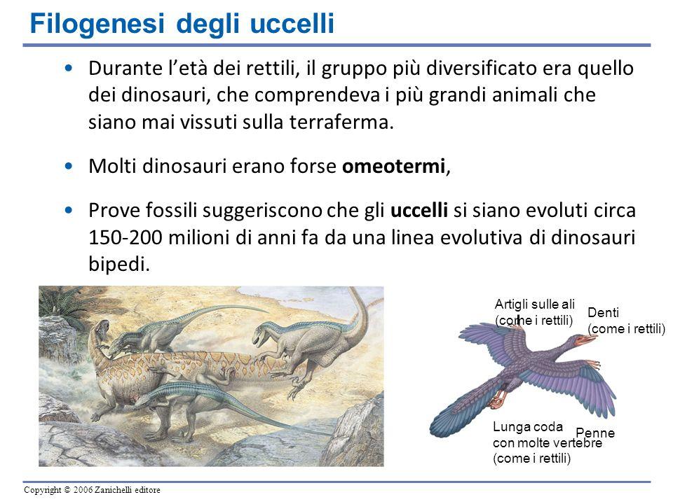 Copyright © 2006 Zanichelli editore Durante letà dei rettili, il gruppo più diversificato era quello dei dinosauri, che comprendeva i più grandi anima