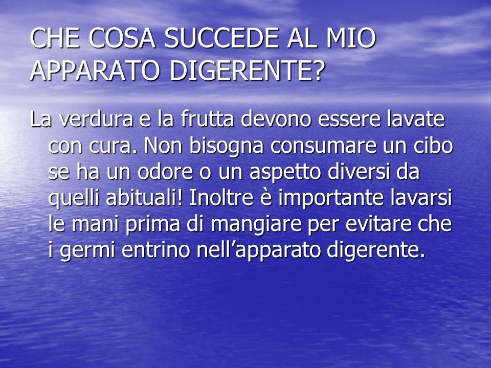 CHE COSA SUCCEDE AL MIO APPARATO DIGERENTE? La verdura e la frutta devono essere lavate con cura. Non bisogna consumare un cibo se ha un odore o un as