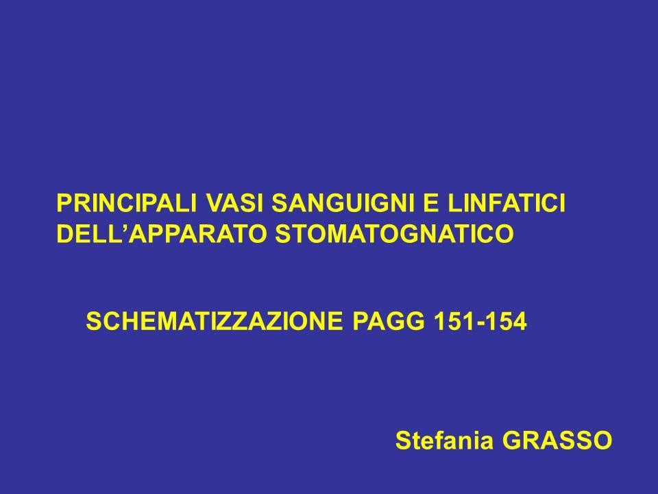 PRINCIPALI VASI SANGUIGNI E LINFATICI DELLAPPARATO STOMATOGNATICO Stefania GRASSO SCHEMATIZZAZIONE PAGG 151-154