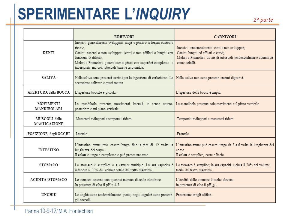 SPERIMENTARE L INQUIRY Parma 10-9-12/ M.A. Fontechiari 2^ parte ERBIVORICARNIVORI DENTI Incisivi: generalmente sviluppati, ampi e piatti o a forma con