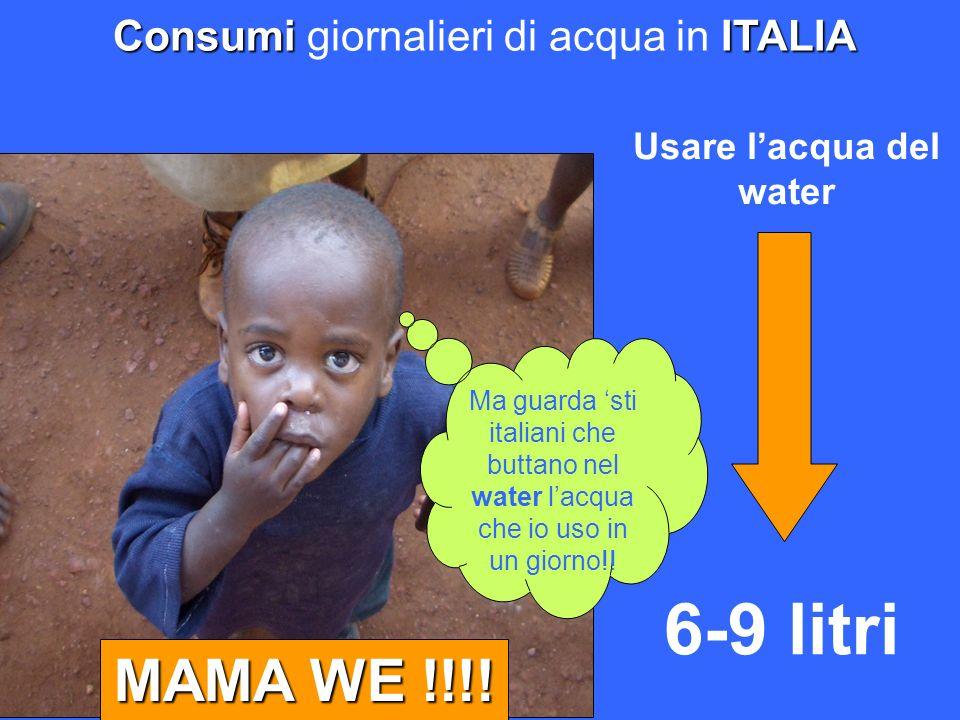 ConsumiITALIA Consumi giornalieri di acqua in ITALIA Usare lacqua del water MAMA WE !!!! Ma guarda sti italiani che buttano nel water lacqua che io us