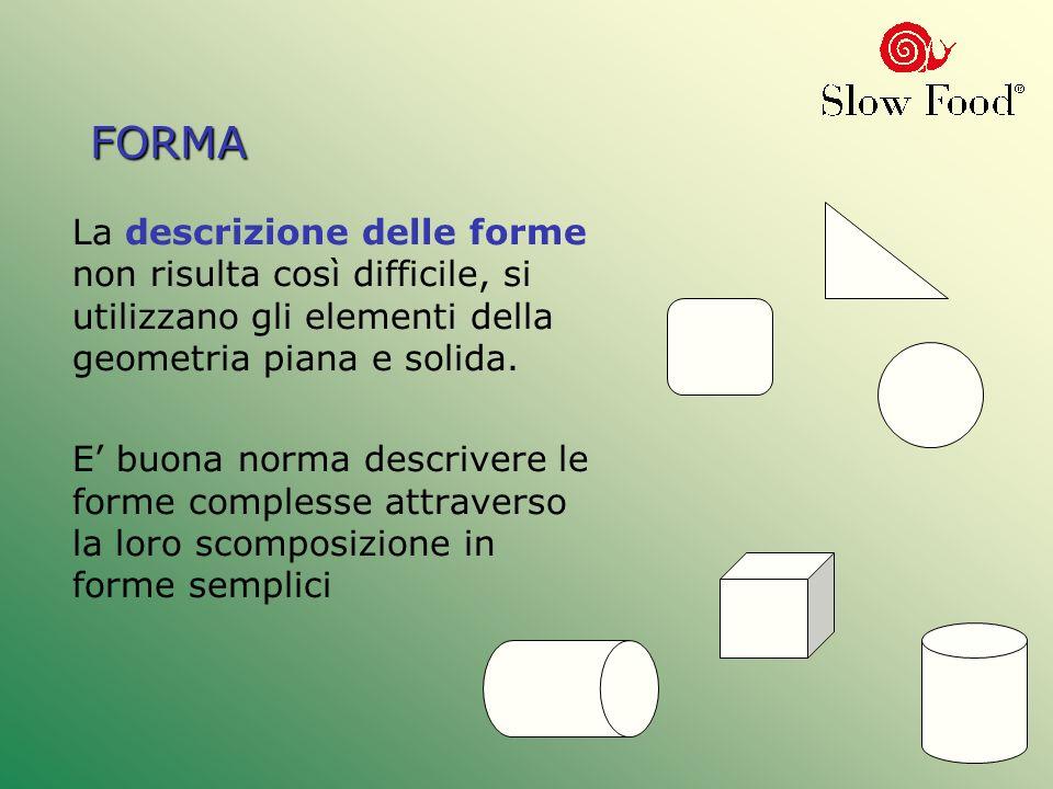 FORMA La descrizione delle forme non risulta così difficile, si utilizzano gli elementi della geometria piana e solida. E buona norma descrivere le fo