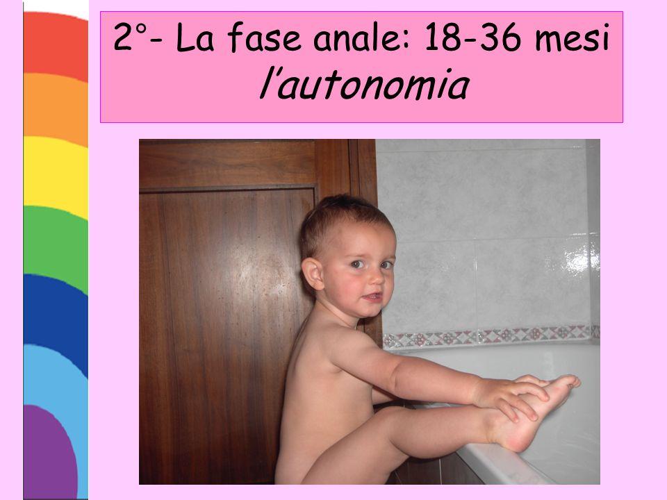 2°- La fase anale: 18-36 mesi lautonomia