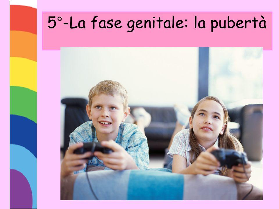 5°-La fase genitale: la pubertà