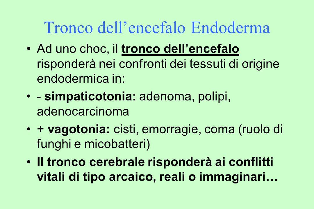 Tronco dellencefalo Endoderma Ad uno choc, il tronco dellencefalo risponderà nei confronti dei tessuti di origine endodermica in: - simpaticotonia: adenoma, polipi, adenocarcinoma + vagotonia: cisti, emorragie, coma (ruolo di funghi e micobatteri) Il tronco cerebrale risponderà ai conflitti vitali di tipo arcaico, reali o immaginari…