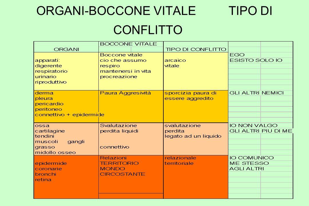 ORGANI-BOCCONE VITALETIPO DI CONFLITTO