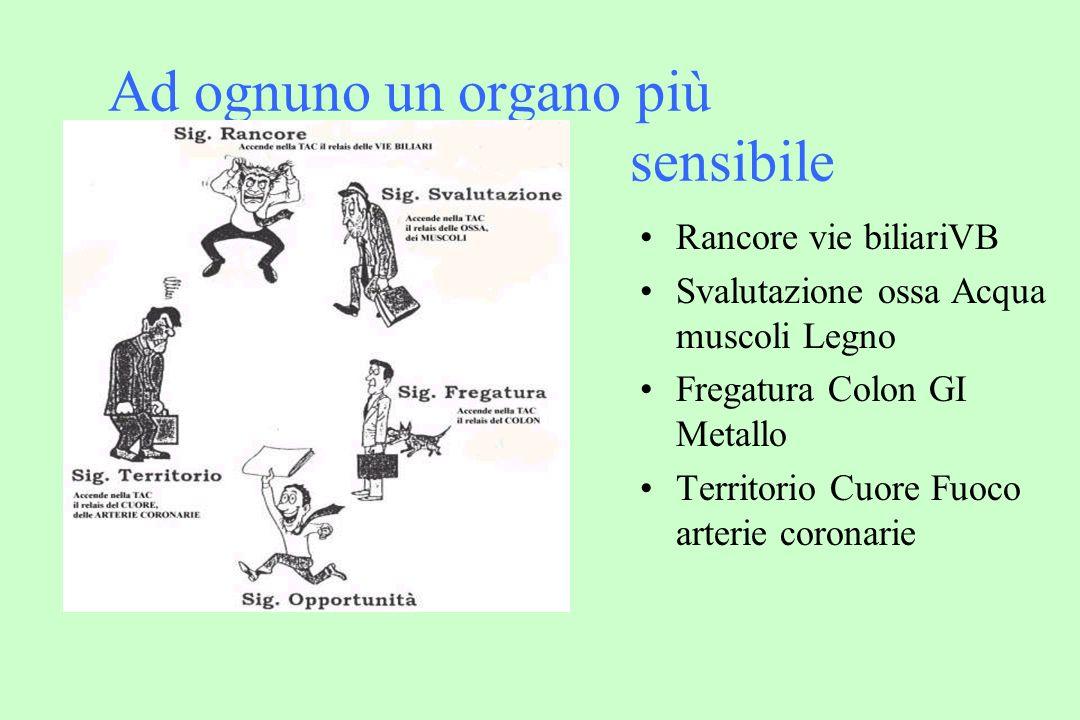 Ad ognuno un organo più sensibile Rancore vie biliariVB Svalutazione ossa Acqua muscoli Legno Fregatura Colon GI Metallo Territorio Cuore Fuoco arterie coronarie